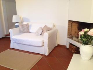 Antica Limonaia di Lappeggi, 20 minuti da Firenze - Florence vacation rentals