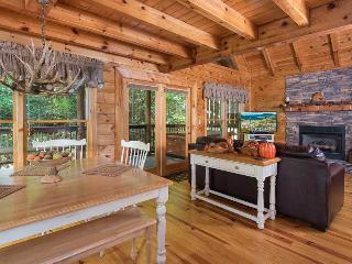 Black Paw - Pigeon Forge vacation rentals