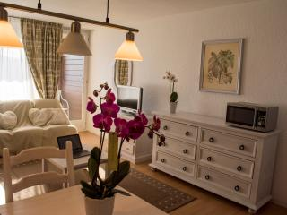 Appartement dans La Résidence Panorama - Villars-sur-Ollon vacation rentals