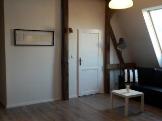 Apartament ART NOUVEAU, city centre - Poznan vacation rentals