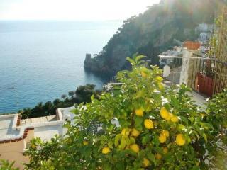 Villa Aniello - Positano-Center, seaview, WIFI - Positano vacation rentals