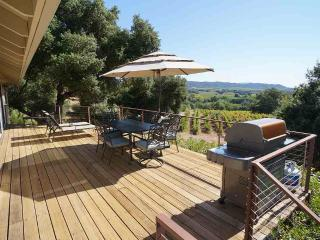 Spacious 4 bedroom House in Healdsburg - Healdsburg vacation rentals