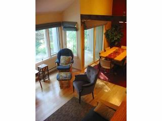 Mad River Condo - Great Location - Waitsfield vacation rentals