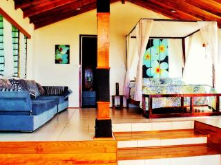 Ocean view Villa - Matei vacation rentals