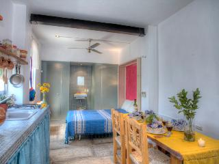 Beautiful Studio with Internet Access and A/C - Puerto Vallarta vacation rentals