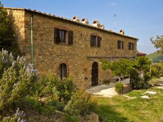 A stone farmhouse 1850, heated pool, Lo Stallone - Pomarance vacation rentals