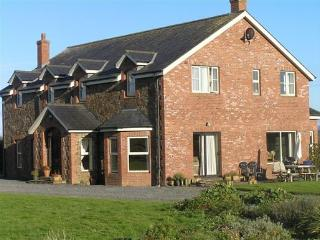 Ash House B & B and 2 bed apartment - Calverstown vacation rentals