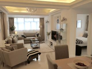 NEW! MODERN! 4 BED/2BATH KOWLOON 1 MIN TO MTR!!! - Hong Kong vacation rentals