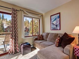 Wildwood Suites 316 Condo Ski-in Breckenridge Vacation Rental - Breckenridge vacation rentals