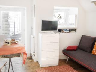 Tranquil Garden Studio in the heart of St Ives - Saint Ives vacation rentals