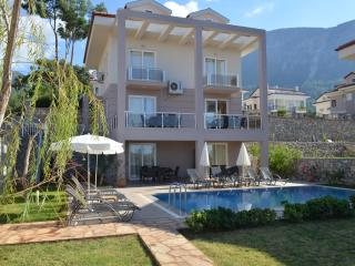 5 BEDROOM LUXURY VİLLA WİTH PANORAMİCMOUNTAİN VİEW - Hisaronu vacation rentals