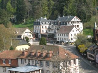 1 bedroom Condo with Internet Access in Le Hohwald - Le Hohwald vacation rentals