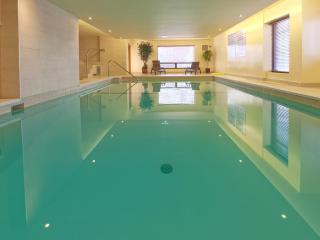 Beautiful 1 bedroom apartment | Pool | Gym | View - Montreal vacation rentals
