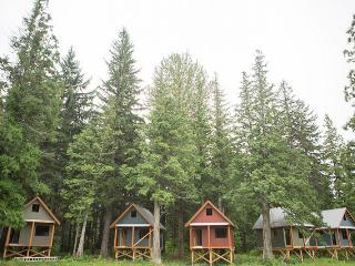 Beautiful Tree house with Stove and Television - Terrace vacation rentals
