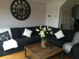 Perfect 3 bedroom Lodge in South Cerney - South Cerney vacation rentals