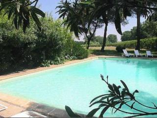 Cozy Arles Condo rental with Internet Access - Arles vacation rentals