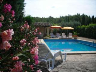 Sunny Villa with Internet Access and Dishwasher - Saint-Remy-de-Provence vacation rentals