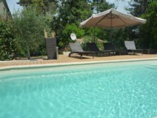 Bright Montauroux Apartment rental with A/C - Montauroux vacation rentals