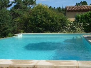 Cozy Montauroux Apartment rental with Internet Access - Montauroux vacation rentals
