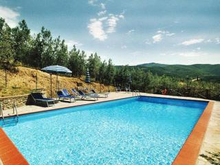 Charming Condo with Shared Outdoor Pool and Television - Castiglion Fiorentino vacation rentals