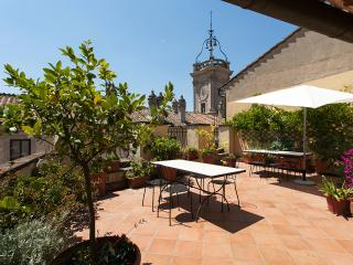 Clock House Terrace - beautiful apt near Navona - Rome vacation rentals