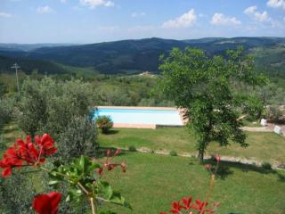 Sicelle 510 - Castellina In Chianti vacation rentals