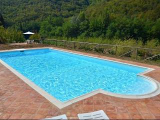 Nice Gaiole in Chianti Apartment rental with Internet Access - Gaiole in Chianti vacation rentals