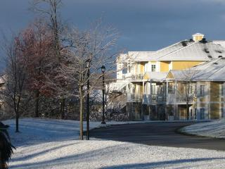 Convenient Condo with Game Room and Television - Horseshoe Valley vacation rentals
