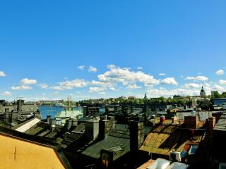 Carl *** 1Cityhome  (STOCKHOLM) - Stockholm vacation rentals