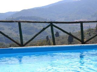 Bright 5 bedroom Carmignano House with Dishwasher - Carmignano vacation rentals