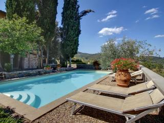 Lovely Condo with Internet Access and Shared Outdoor Pool - Lucolena vacation rentals