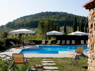 Cozy 1 bedroom Pontassieve Apartment with Internet Access - Pontassieve vacation rentals