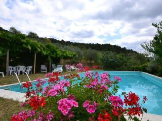 Charming Pontassieve Condo rental with Internet Access - Pontassieve vacation rentals