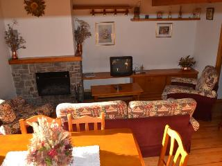 3 bedroom Condo with Washing Machine in Alp - Alp vacation rentals