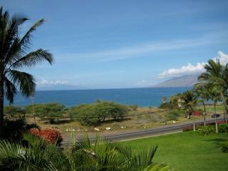 Fabulous Ocean View - Luxury Condo - Kihei vacation rentals