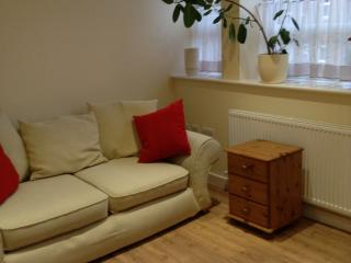 One bedroomed apartment close to town centre - Hinckley vacation rentals