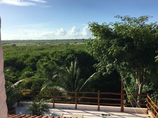 Sunset Sunrise overlooking lush tropical nature - Puerto Morelos vacation rentals