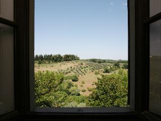 Attic home, near to Florence & Siena, spectacular - Tavarnelle Val di Pesa vacation rentals