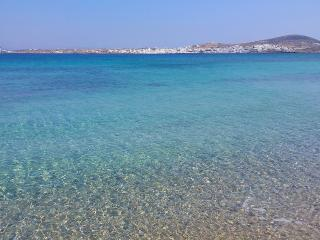 Magical place with heavenly beach in the back yard - Naoussa vacation rentals