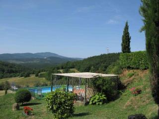 Nice Villa with Internet Access and Dishwasher - Radicondoli vacation rentals