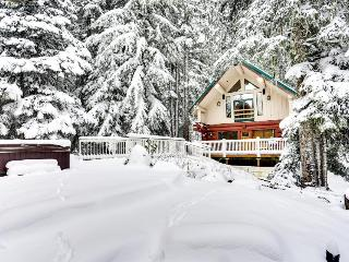 Pet-friendly cabin near Timberline with hot tub, sleeps 12! - Government Camp vacation rentals