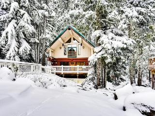 Dog-friendly hideaway near Timberline with soothing hot tub - Government Camp vacation rentals