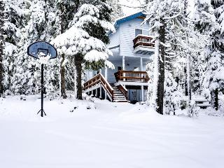 Cozy, two-level chalet near hiking, lakes, and ski resorts! - Government Camp vacation rentals