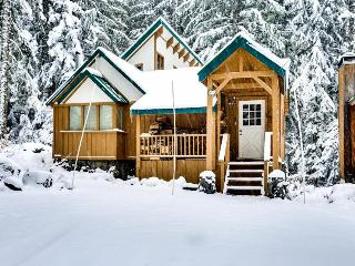 Cozy, riverfront cabin w/ private hot tub, close to ski access! - Government Camp vacation rentals