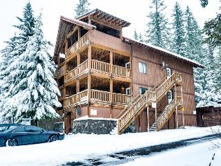 Spacious, dog-friendly lodge with a private sauna - close to 3 ski resorts! - Government Camp vacation rentals