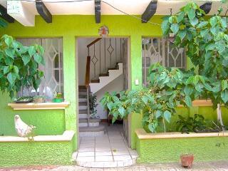 Big Cozy 5 Bedroom House Terraces in Downtown - San Cristobal de las Casas vacation rentals