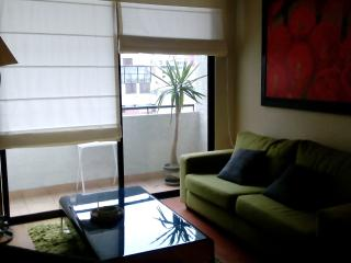 MODERNO DPTO. CON PISCINA GYM SAUNA EN MIRAFLORES - Lima vacation rentals