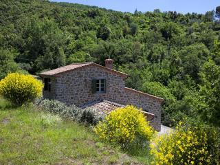 Wonderful 5 bedroom Villa in San Pietro a Cegliolo - San Pietro a Cegliolo vacation rentals