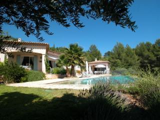 Villa Les Oliviers - Montauroux vacation rentals