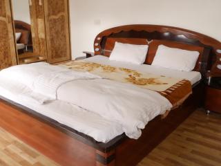 Deluxe Room Hotel PC Palace Kargil - Kargil vacation rentals